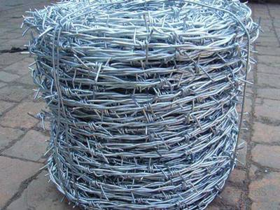A coil of Traditional galvanized Barbed Wire on the ground